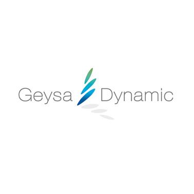 Geysa Dynamic logo design