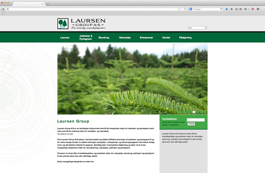 Laursen Group website