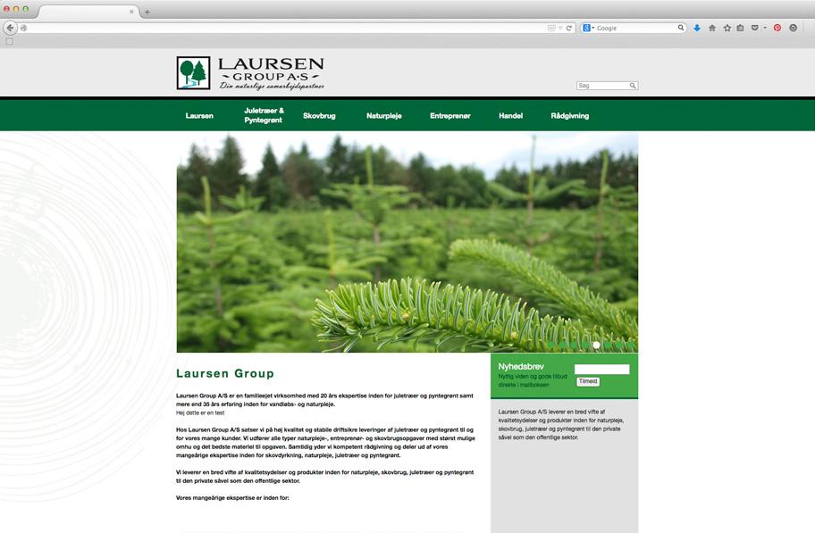 Laursen Group website