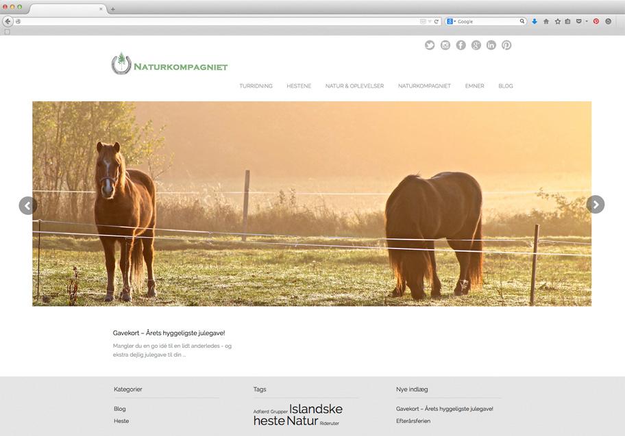 Naturkompagniet webdesign